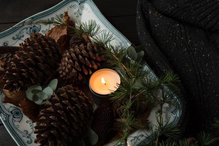 pinecones candles branches joanna-kosinska-392327
