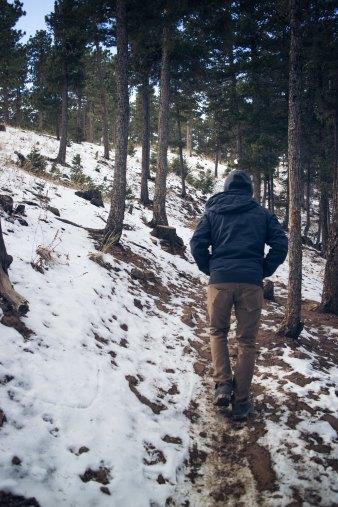 Winter_Walking amir-hamdi-