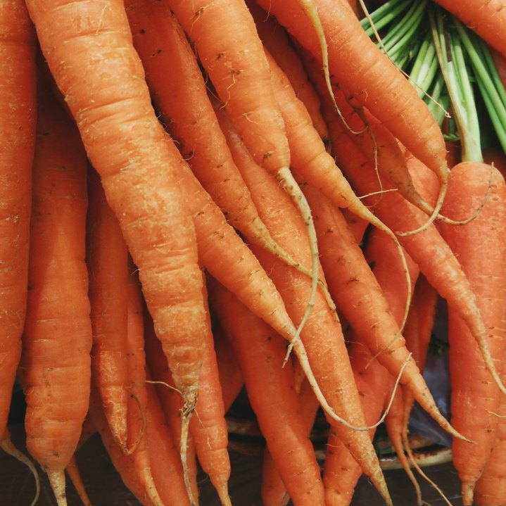 carrots_hoarshal-s-hirve-44494