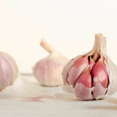 garlic_mike-kenneally-345257