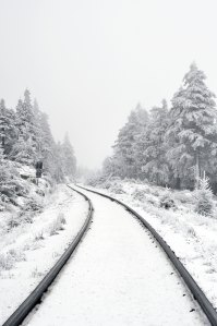winter train_Photo by Sandra Mode on Unsplash